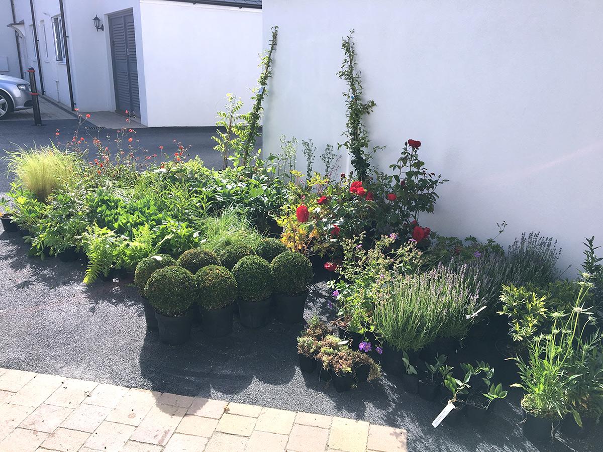 Garden Design Bath | Key Trends for 2019 on garden design bright colors, garden design tips, garden design concepts, garden design principles, garden design inspiration, garden craft trends, garden design ideas, garden decor trends,
