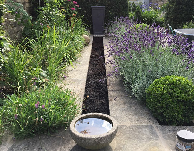 Garden Designer Bath Tips For Low Maintenance Gardens